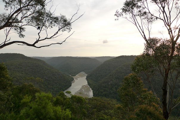 Berowra Valley
